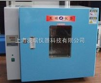 立式电热鼓风干燥箱