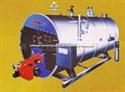 蒸汽锅炉(卧式1/2吨燃油/燃气锅炉)