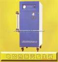 WDR0.065-0.7功率45kw免检电锅炉