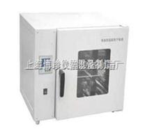 精密電熱恒溫鼓風干燥箱(液晶屏),烘箱,上海老化箱