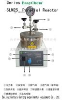 微型加氫反應釜
