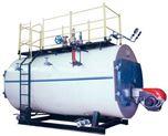 燃油(气) 电加热 蒸汽锅炉 热水锅炉 真空锅炉