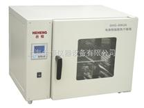 小型恒温烤箱/恒温烘箱/工业烘箱/工业烘干箱