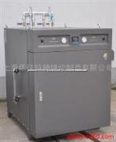 供應全自動電蒸汽清洗機