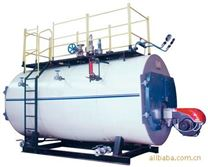供应天燃气/煤气/液化气燃气锅炉