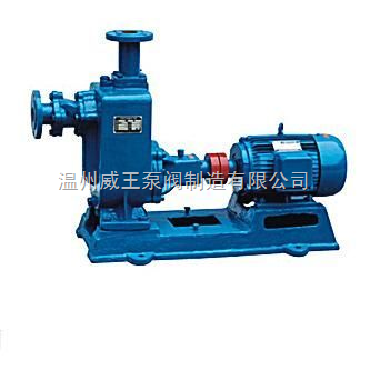 ZW型無堵塞自吸式排污泵化工原料壓濾機入料泵防腐耐磨