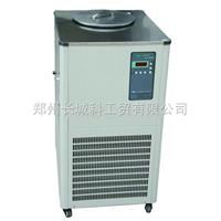 DLSB-20/30低温设备冷却液循环泵